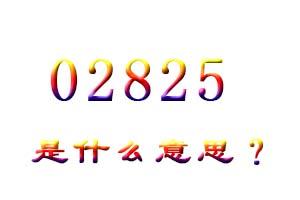 02825是什么意思